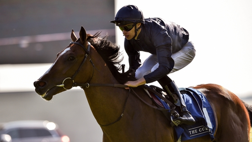 Armory could go in the Galileo Irish EBF Futurity Stakes
