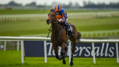Hermosa winning the Curragh 1,000 Guineas