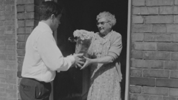 Young man distributes house plant to pensioner, Derry (1969)