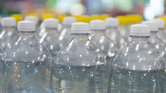 Single Use Plastic Lobbying