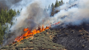 Firefighters are using planes and helicopters to fight the blaze