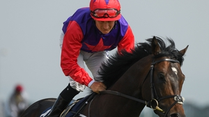 Romanised could travel to the US for a tilt at the Breeders' Cup Mile