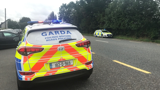 Gardaí: Using mobile phone while driving is 'killer behaviour'