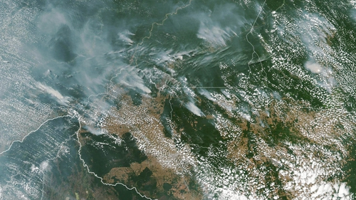 A NASA satellite image from 13 August shows fires in the states of Amazonas (top C-L), Para (top R), Mato Grosso (bottom R) and Rondonia (bottom C)