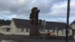 The tree was planted on 3 July 1900 to mark the opening of the new school - Scoil Naomh Abán