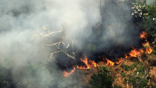 The dramatic scale of this year's fires is the result of a significant acceleration of deforestation