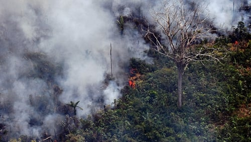 Some 1,663 new fires were ignited between Thursday and Friday in the Amazon