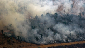 Nearly 80,000 fires have been registered across Brazil through 24 August, the highest since at least 2013