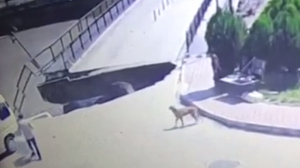 CCTV footage obtained by Kanal 362 shows the moment of the collapse