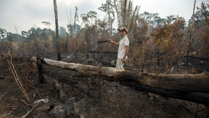 Funding for prevention and control of forest fires has also been reduced