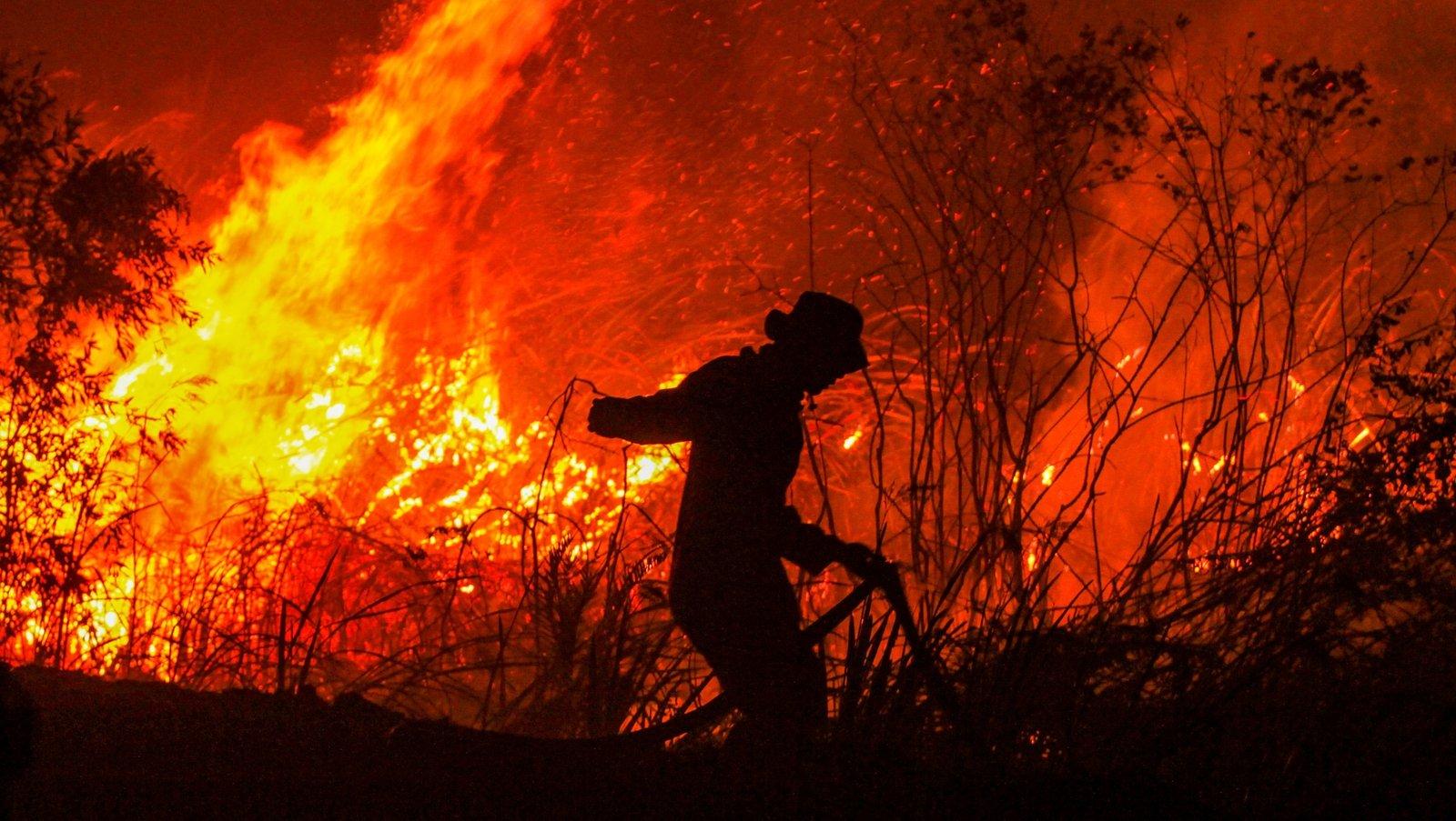 Indonesia, Australia fires stoke global warming fears - RTE.ie