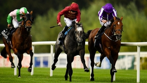 The ill-fated Roaring Lion mowed down Saxon Warrior in the dying strides of last season's Irish Champion Stakes