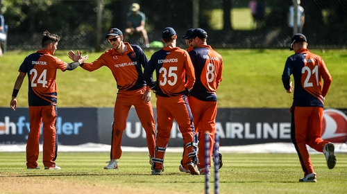 The Netherlands players celebrate after taking a wicket  at Malahide Cricket Club