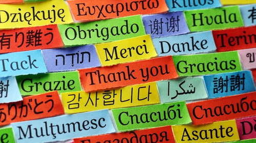 """""""A complete knowledge of a language is not a pre-requisite to either speaking or writing it"""" Photo: Getty"""