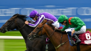 Innisfree has now accounted for Shekhem by a neck in two of his three racecourse starts