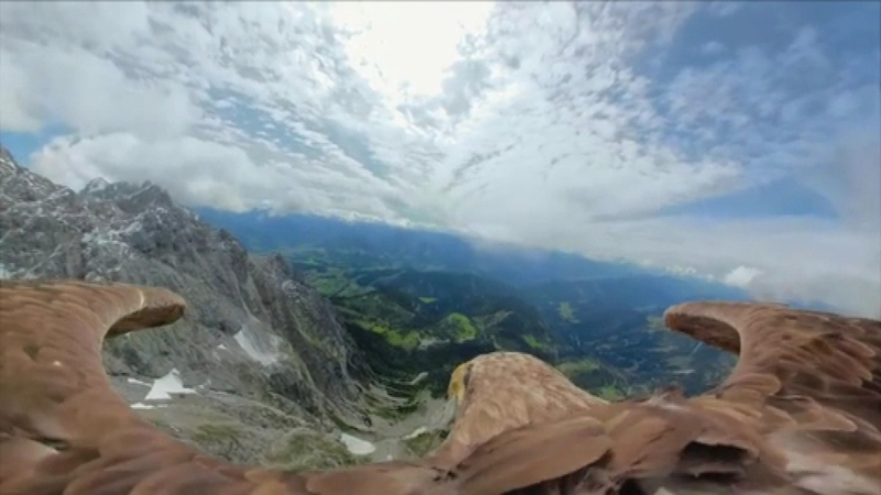 Eagle's filmed flight highlights melting glaciers