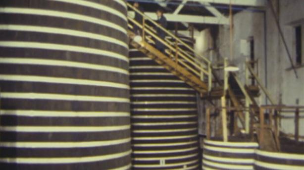 Bulmers fermentation vats, Clonmel (1984)