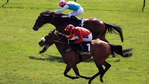 Mabs Cross (near side) is as big as 33-1 for Ascot's Group One sprint