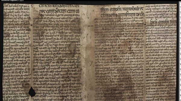 A page from a previously undiscovered 15th-century Irish vellum manuscript showing a connection between Gaelic Ireland and the Islamic world. Photo: Irish Script On Screen/Dublin Institute for Advanced Studies