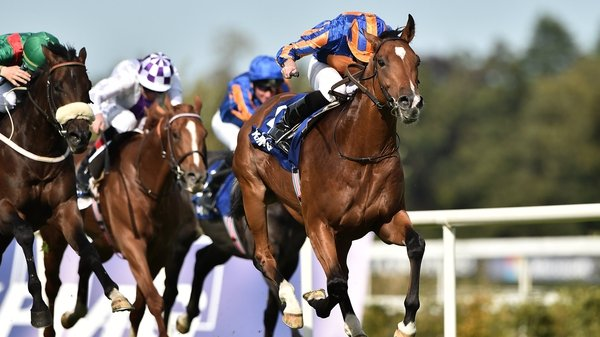 Aidan O'Brien is hoping for a sound surface at Keeneland for Mogul