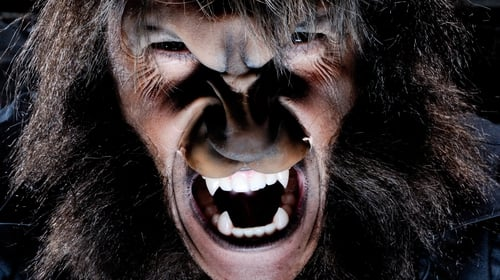 """Werewolf myths have proven a ripe metaphor for the changes associated with adolescence, including aggressive behaviour, heightened sexual emotions, muscle development and emerging body hair"""