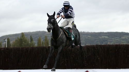 Al Dancer can be backed at 14-1 for the Arkle at the Cheltenham Festival
