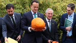 Government ministers in the Botanic Gardens, Dublin for the launch of the progress report