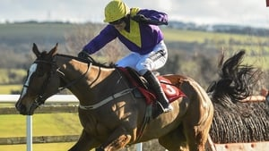 Cilaos Emery is a general 8-1 shot for the Champion Chase at the Cheltenham Festival