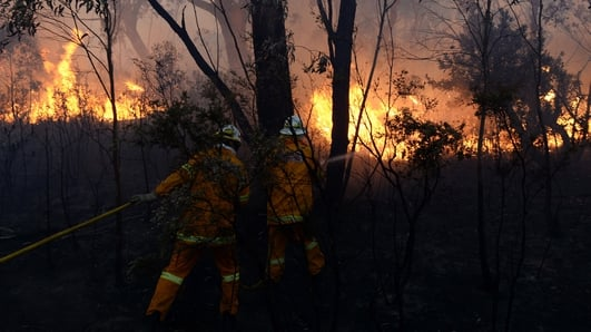 Three dead in 'unprecedented' Australian bushfires