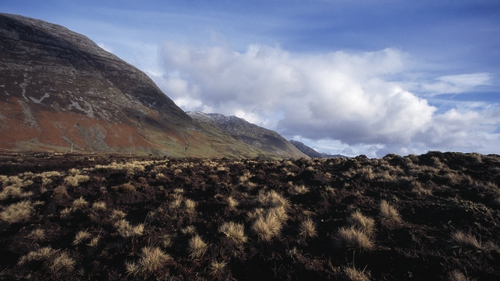 Peat bogs in Connemara. Photo: David Lefranc/Kipa/Sygma via Getty Images