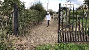 Beekeeper Mairéad Doherty