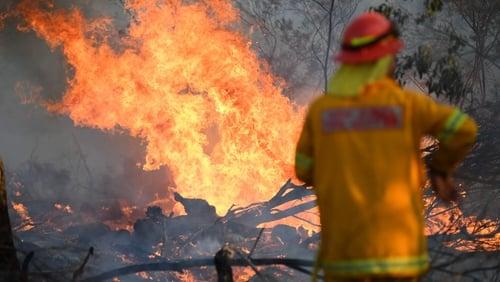 A firefighter works to contain a bushfire near Glen Innes