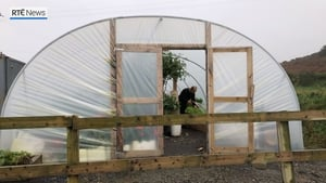 Rainwater is used to water vegetables in the hotel's poly tunnel