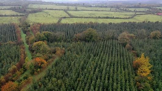 Climate Change: Farming