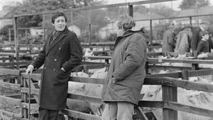 Gabriel Byrne and Niall Tóibín in Bracken (1979)