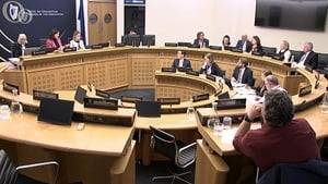 The committee heard from representatives ofa number of organisations