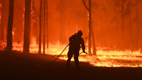 RFS volunteers and NSW Fire and Rescue officers work to put out a fire south west of Sydney