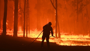 Australia has been dealing with an unprecedented bushfire crisis