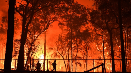 RFS volunteers and NSW Fire and Rescue officers battle the Gospers Mountain fire south west of Sydney