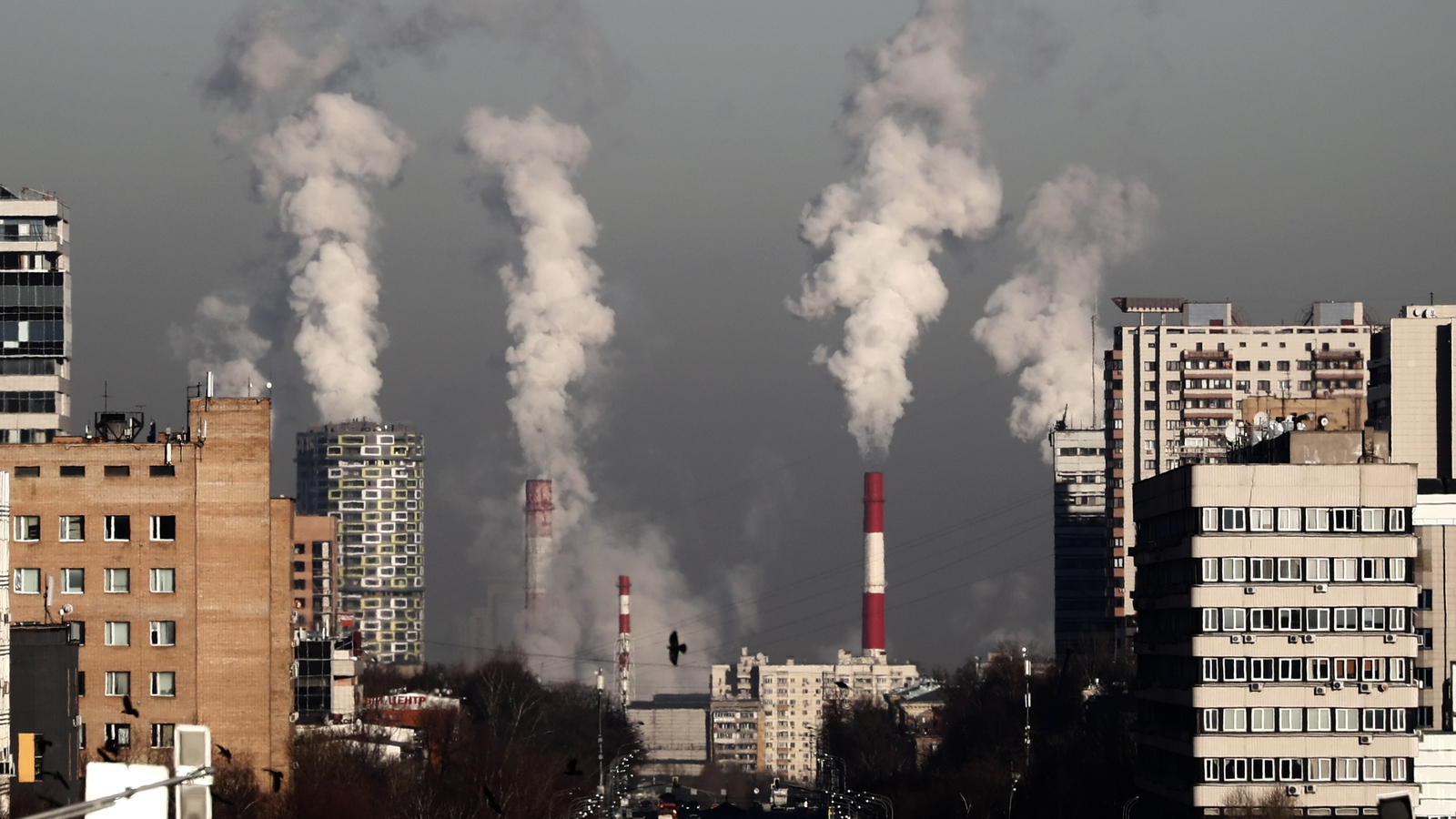 EU declares climate emergency ahead of summit