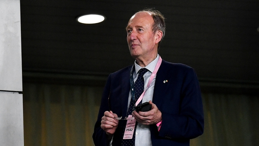 Ross: New FAI CEO must be 'completely independent'