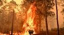Fire rages in Werombi 50km south west of Sydney