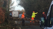 Emergency crews deal with fallen trees in Newbridge, Co Kildare