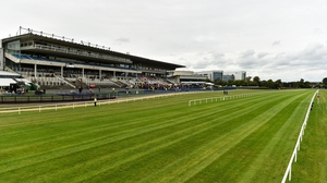 Never Do Nothing will go to Leopardstown, as long as the going stays good