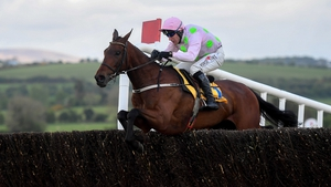 Chacun Pour Soi runs in the Paddy's Rewards Club Chase