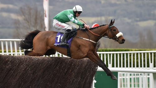 Owner Philip Reynolds has opined that whatever beats Irish Gold Cup hopeful Presenting Percy wins