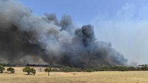 Return of hot weather has seen bushfires regenerating