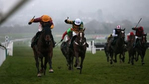 Israel Champ (yellow cap) has won his last two starts in testing conditions