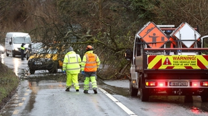 The damage is mainly due to fallen trees on overhead lines because of the high winds (Photo: Rolling News.ie)