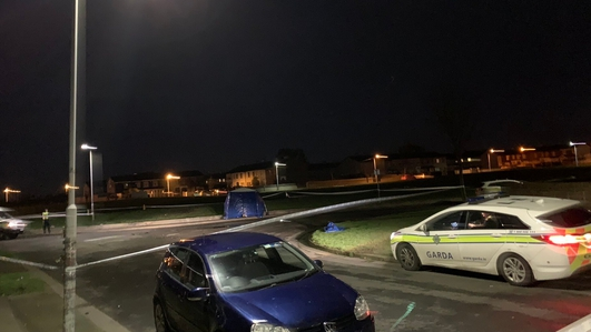 Human remains found in bag in Dublin estate